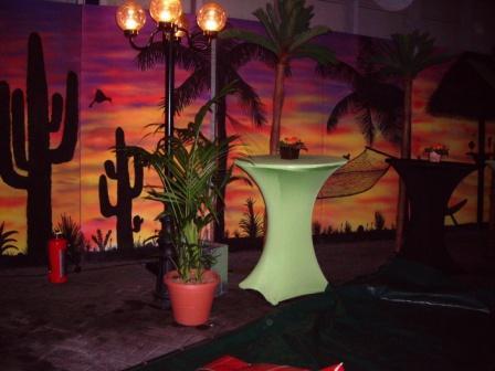 Latijns amerikaans themafeest latijns amerikaanse avond for Decoratie feest
